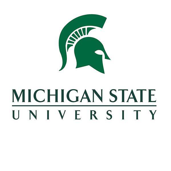 Michigan state university 300